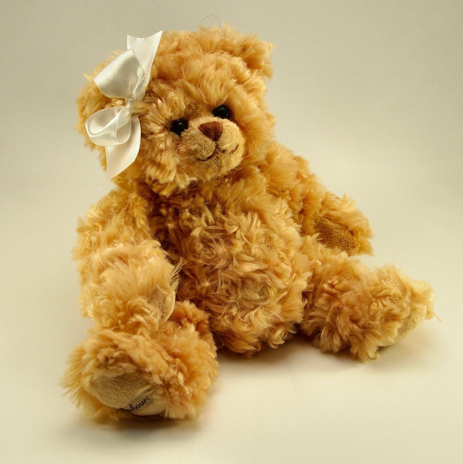 テディベア シャンティー Teddy Bear Shanti